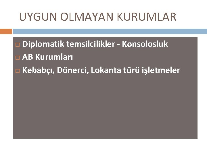 UYGUN OLMAYAN KURUMLAR Diplomatik temsilcilikler - Konsolosluk AB Kurumları Kebabçı, Dönerci, Lokanta türü işletmeler