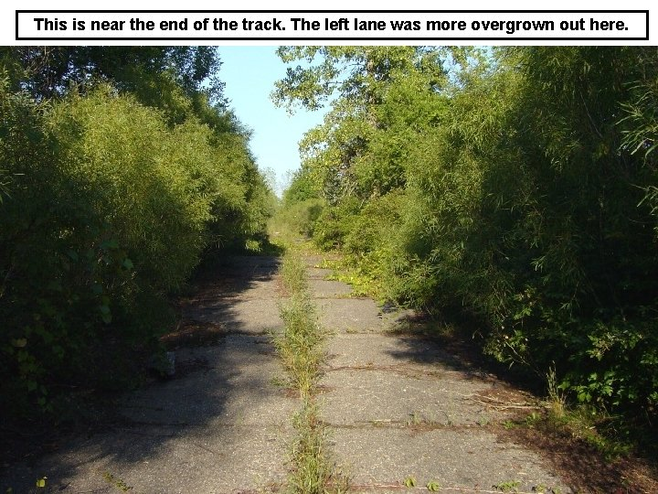 This is near the end of the track. The left lane was more overgrown