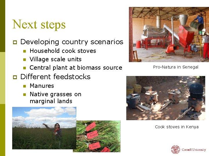 Next steps p Developing country scenarios n n n p Household cook stoves Village