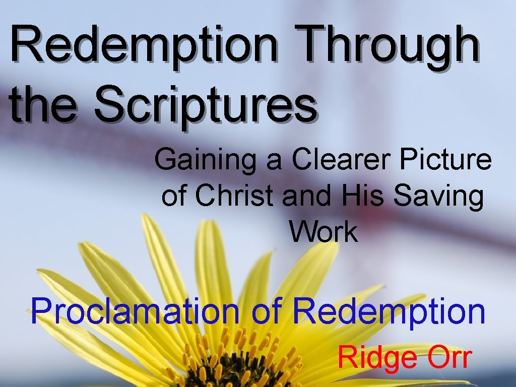 Redemption Through the Scriptures Gaining a Clearer Picture of Christ and His Saving Work
