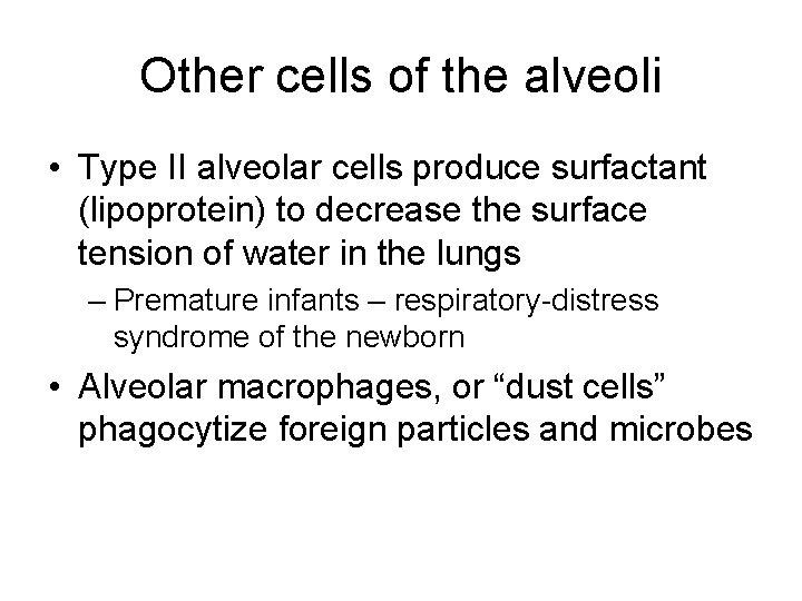 Other cells of the alveoli • Type II alveolar cells produce surfactant (lipoprotein) to