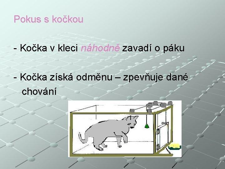 Pokus s kočkou - Kočka v kleci náhodně zavadí o páku - Kočka získá