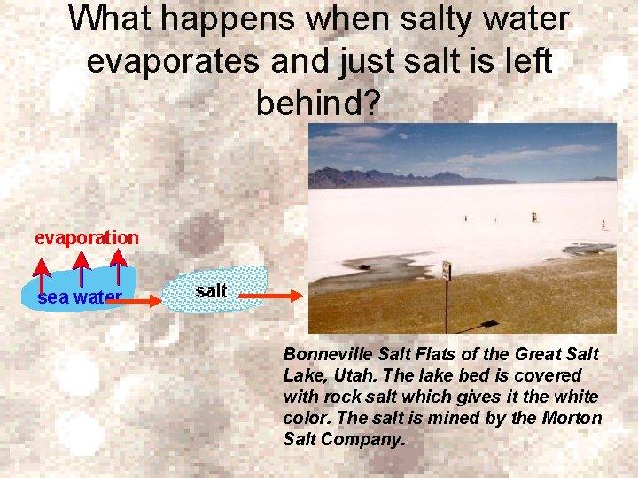 What happens when salty water evaporates and just salt is left behind? Bonneville Salt