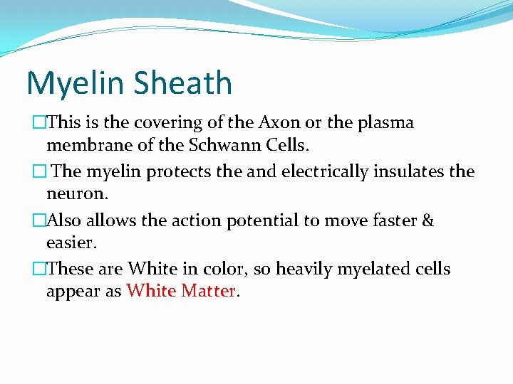 Myelin Sheath �This is the covering of the Axon or the plasma membrane of