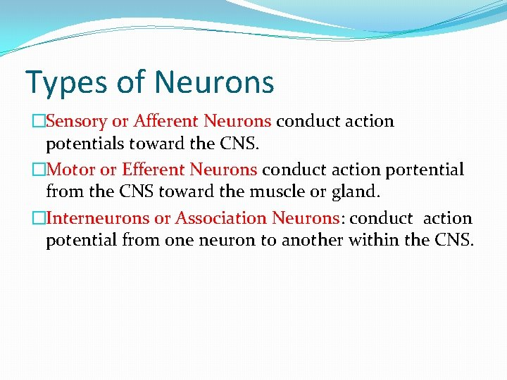 Types of Neurons �Sensory or Afferent Neurons conduct action potentials toward the CNS. �Motor