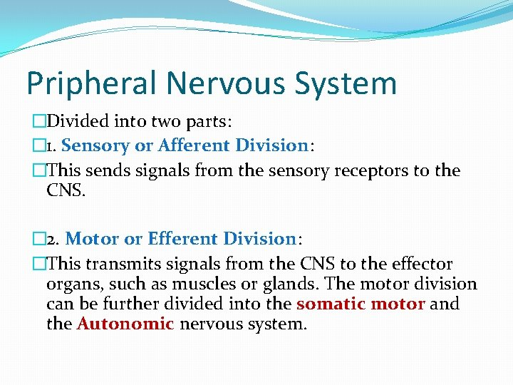 Pripheral Nervous System �Divided into two parts: � 1. Sensory or Afferent Division: �This