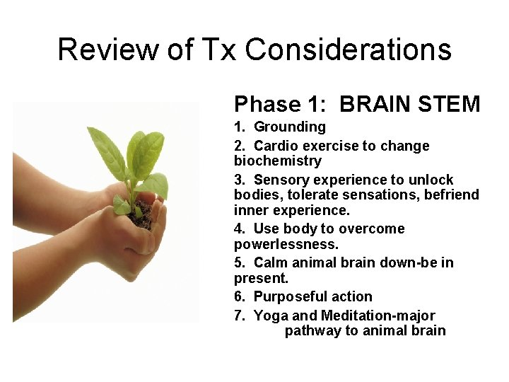 Review of Tx Considerations Phase 1: BRAIN STEM 1. Grounding 2. Cardio exercise to