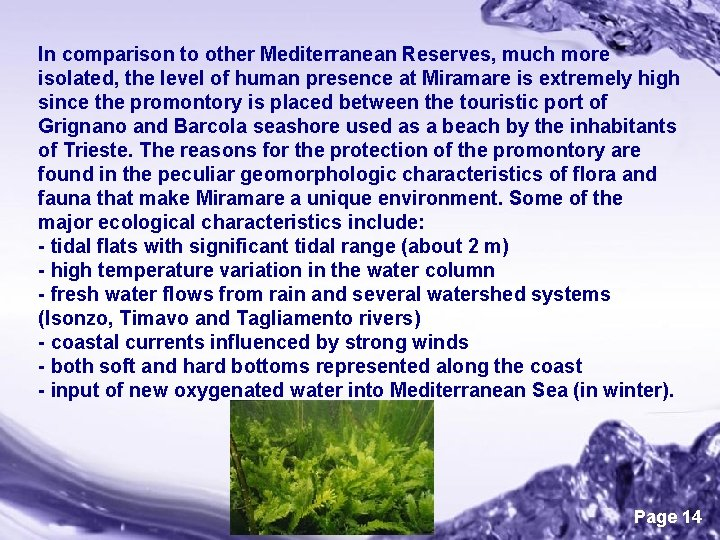 In comparison to other Mediterranean Reserves, much more isolated, the level of human presence