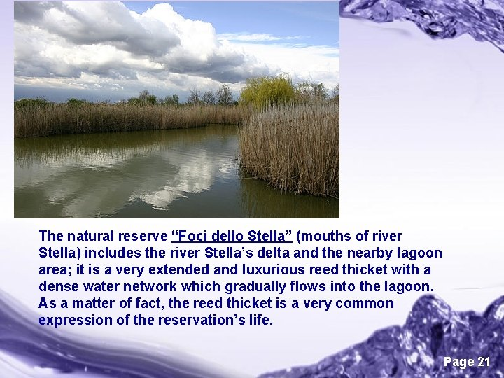 """The natural reserve """"Foci dello Stella"""" (mouths of river Stella) includes the river Stella's"""