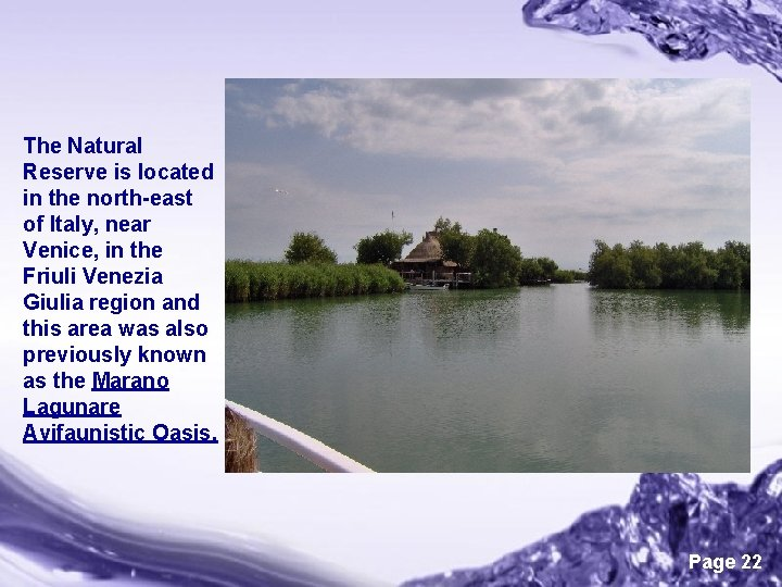 The Natural Reserve is located in the north-east of Italy, near Venice, in the
