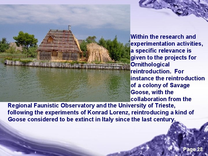 Within the research and experimentation activities, a specific relevance is given to the projects