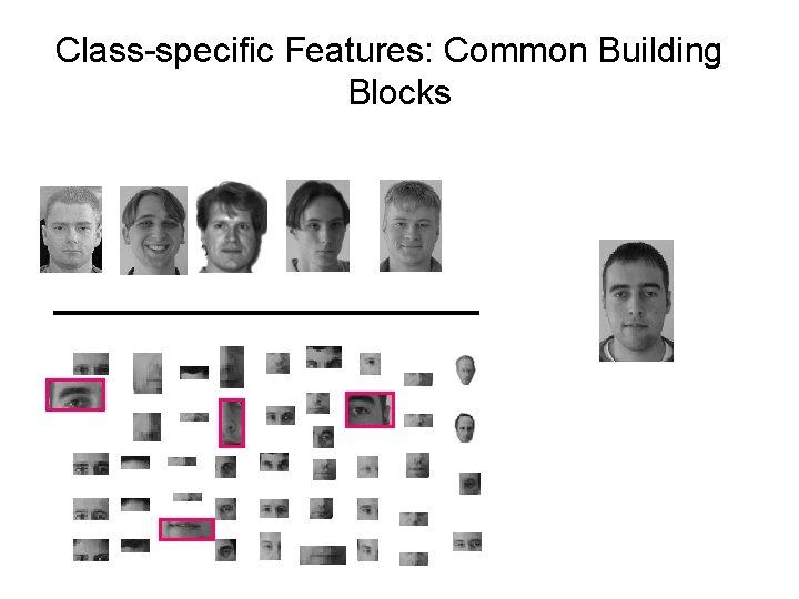 Class-specific Features: Common Building Blocks