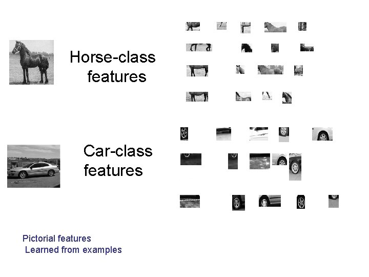 Horse-class features Car-class features Pictorial features Learned from examples