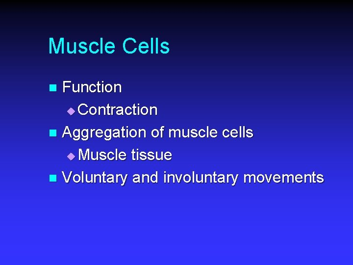 Muscle Cells Function u Contraction n Aggregation of muscle cells u Muscle tissue n