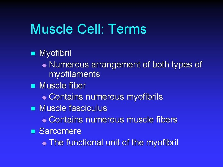 Muscle Cell: Terms n n Myofibril u Numerous arrangement of both types of myofilaments