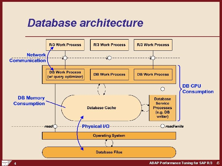 Database architecture 4 ABAP Performance Tuning for SAP R/3
