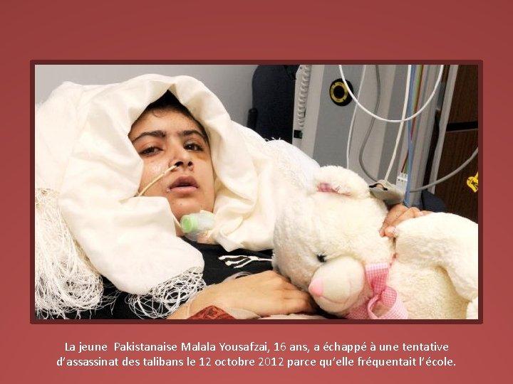 La jeune Pakistanaise Malala Yousafzai, 16 ans, a échappé à une tentative d'assassinat des