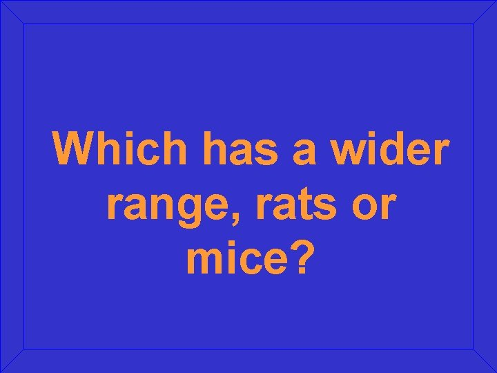 Which has a wider range, rats or mice?