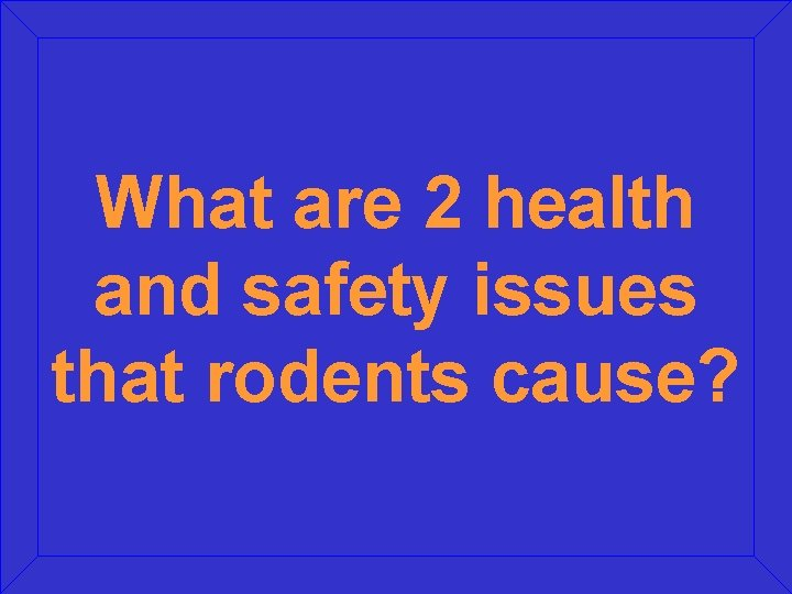 What are 2 health and safety issues that rodents cause?