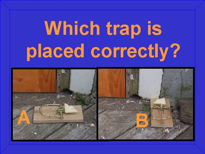 Which trap is placed correctly? A B
