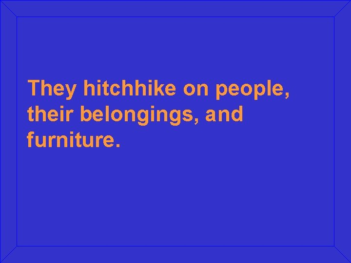They hitchhike on people, their belongings, and furniture.