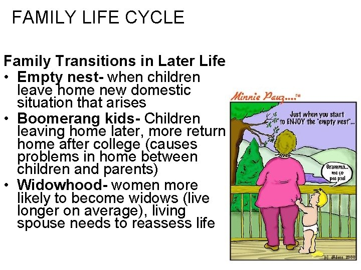 FAMILY LIFE CYCLE Family Transitions in Later Life • Empty nest- when children leave