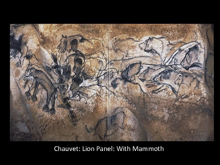 Chauvet: Lion Panel: With Mammoth