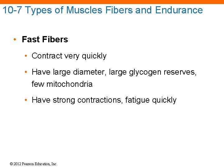 10 -7 Types of Muscles Fibers and Endurance • Fast Fibers • Contract very