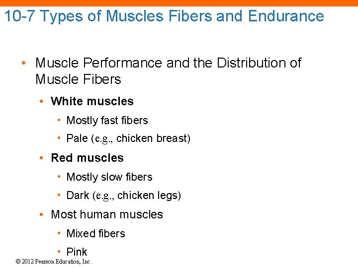 10 -7 Types of Muscles Fibers and Endurance • Muscle Performance and the Distribution