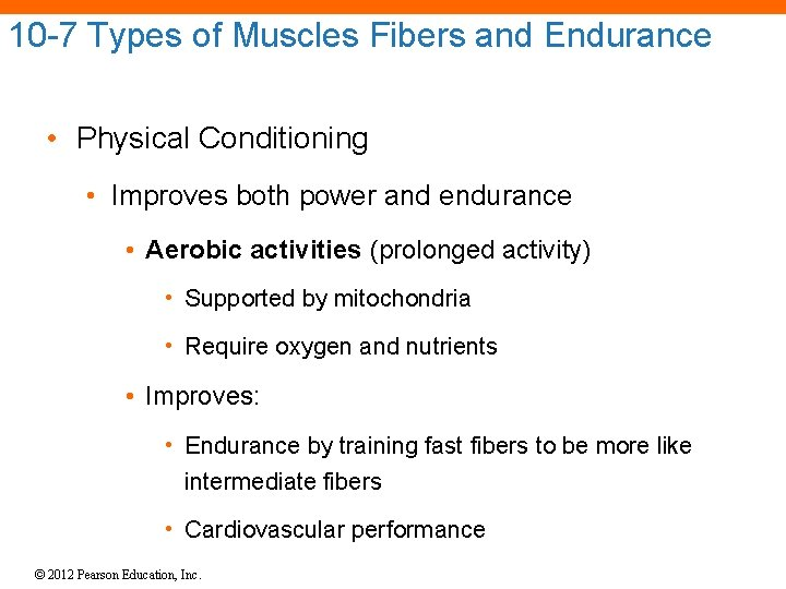 10 -7 Types of Muscles Fibers and Endurance • Physical Conditioning • Improves both