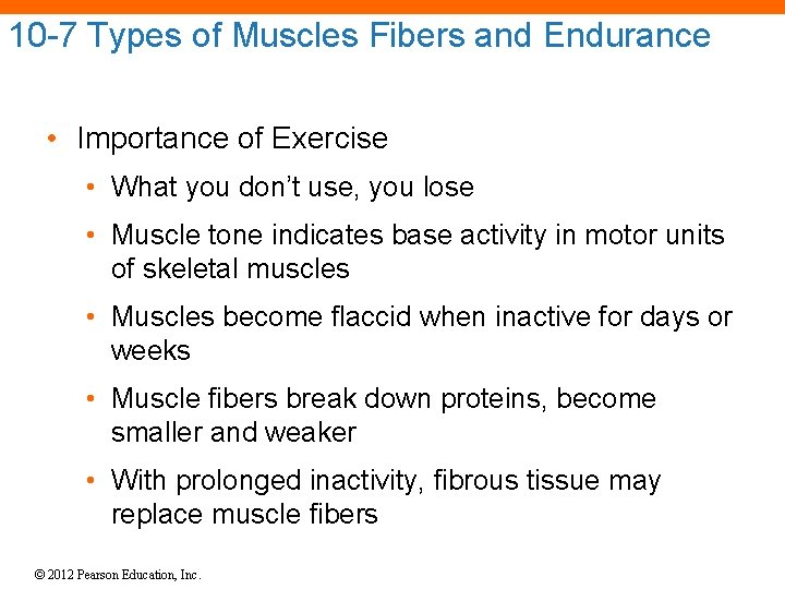 10 -7 Types of Muscles Fibers and Endurance • Importance of Exercise • What