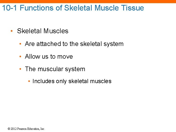10 -1 Functions of Skeletal Muscle Tissue • Skeletal Muscles • Are attached to
