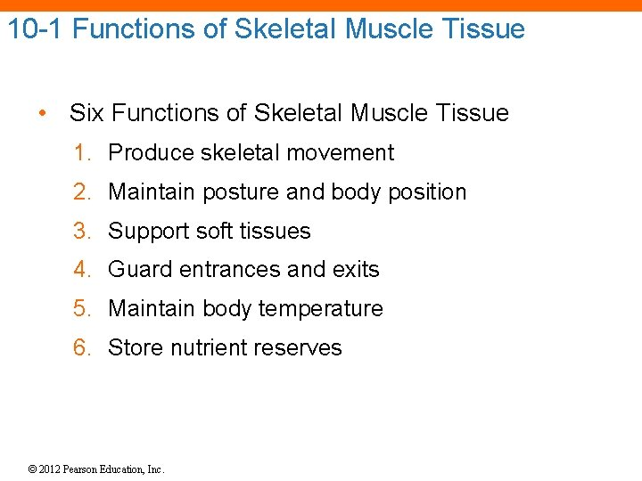 10 -1 Functions of Skeletal Muscle Tissue • Six Functions of Skeletal Muscle Tissue