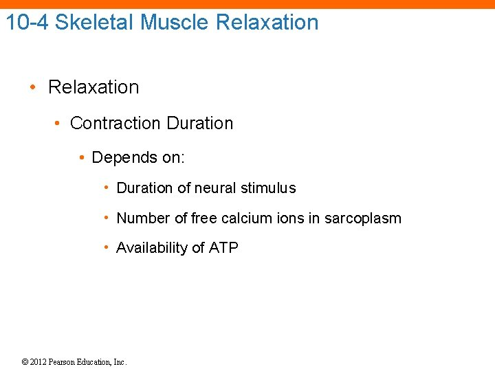 10 -4 Skeletal Muscle Relaxation • Contraction Duration • Depends on: • Duration of