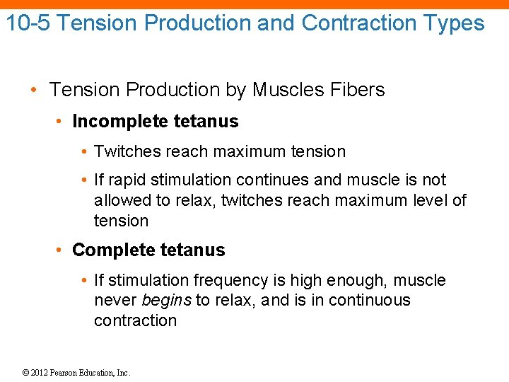 10 -5 Tension Production and Contraction Types • Tension Production by Muscles Fibers •