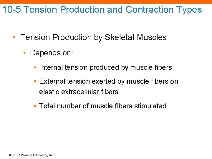 10 -5 Tension Production and Contraction Types • Tension Production by Skeletal Muscles •