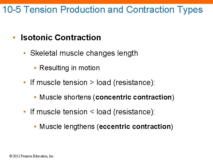 10 -5 Tension Production and Contraction Types • Isotonic Contraction • Skeletal muscle changes