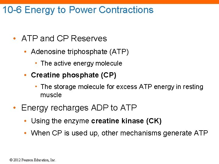 10 -6 Energy to Power Contractions • ATP and CP Reserves • Adenosine triphosphate
