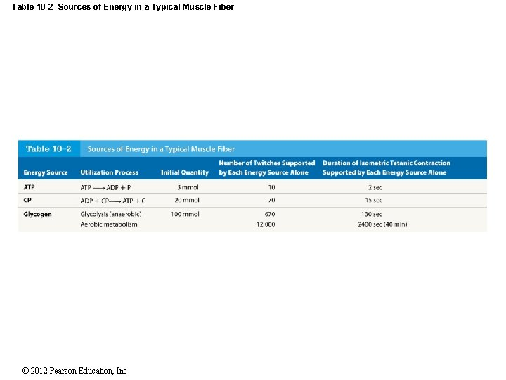 Table 10 -2 Sources of Energy in a Typical Muscle Fiber © 2012 Pearson