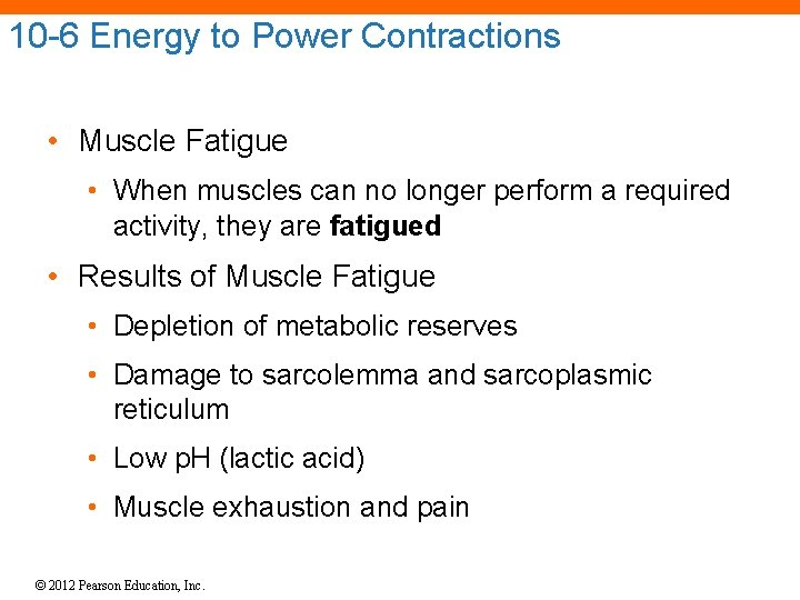 10 -6 Energy to Power Contractions • Muscle Fatigue • When muscles can no