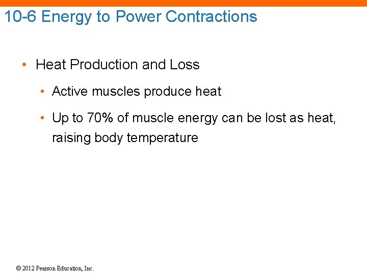 10 -6 Energy to Power Contractions • Heat Production and Loss • Active muscles