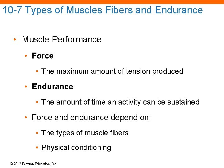 10 -7 Types of Muscles Fibers and Endurance • Muscle Performance • Force •