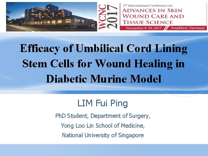 Efficacy of Umbilical Cord Lining Stem Cells for Wound Healing in Diabetic Murine Model
