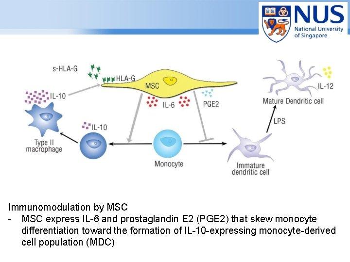 Immunomodulation by MSC - MSC express IL-6 and prostaglandin E 2 (PGE 2) that