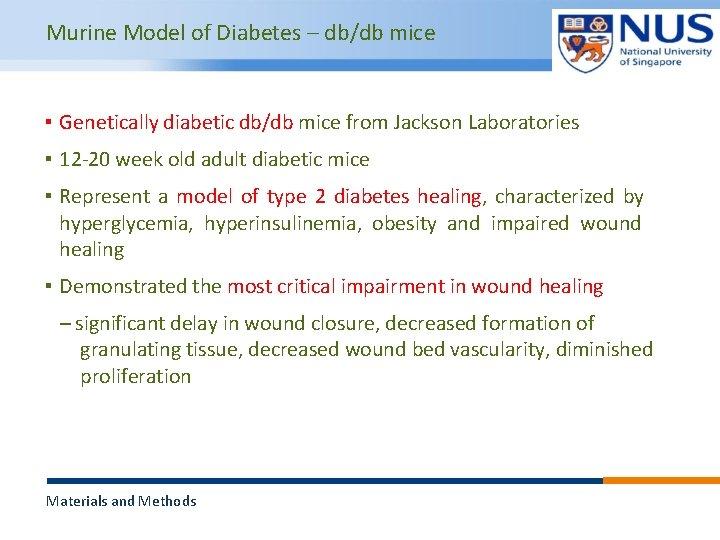 Murine Model of Diabetes – db/db mice ▪ Genetically diabetic db/db mice from Jackson