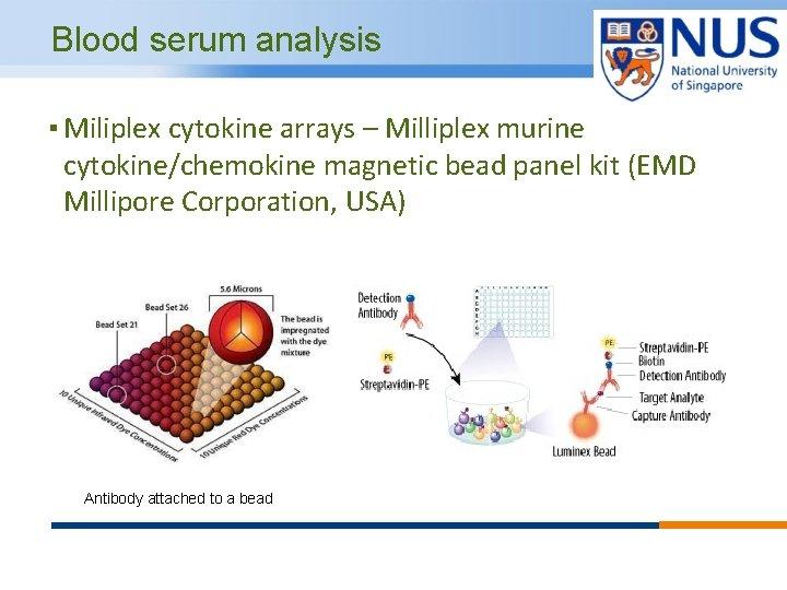 Blood serum analysis ▪ Miliplex cytokine arrays – Milliplex murine cytokine/chemokine magnetic bead panel