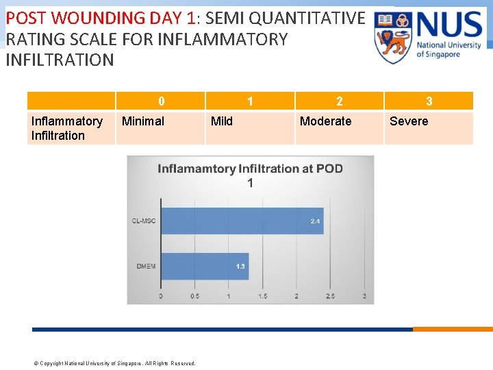 POST WOUNDING DAY 1: SEMI QUANTITATIVE RATING SCALE FOR INFLAMMATORY INFILTRATION 0 Inflammatory Infiltration