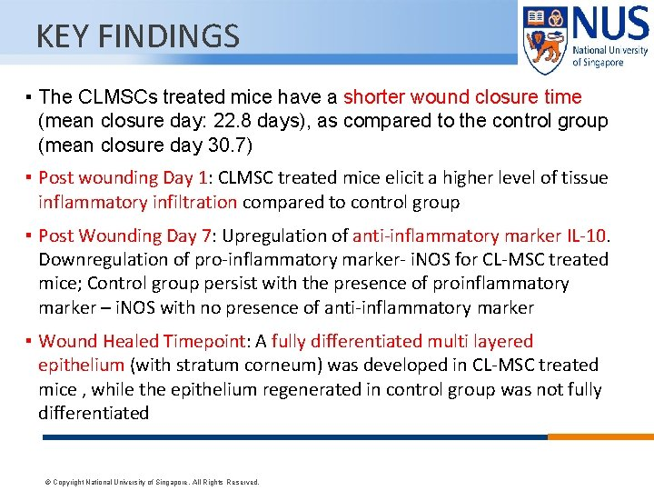 KEY FINDINGS ▪ The CLMSCs treated mice have a shorter wound closure time (mean