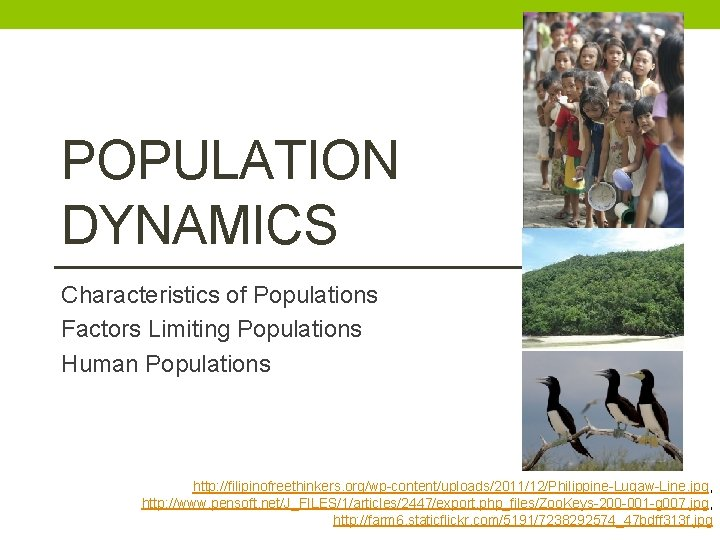 POPULATION DYNAMICS Characteristics of Populations Factors Limiting Populations Human Populations http: //filipinofreethinkers. org/wp-content/uploads/2011/12/Philippine-Lugaw-Line. jpg,