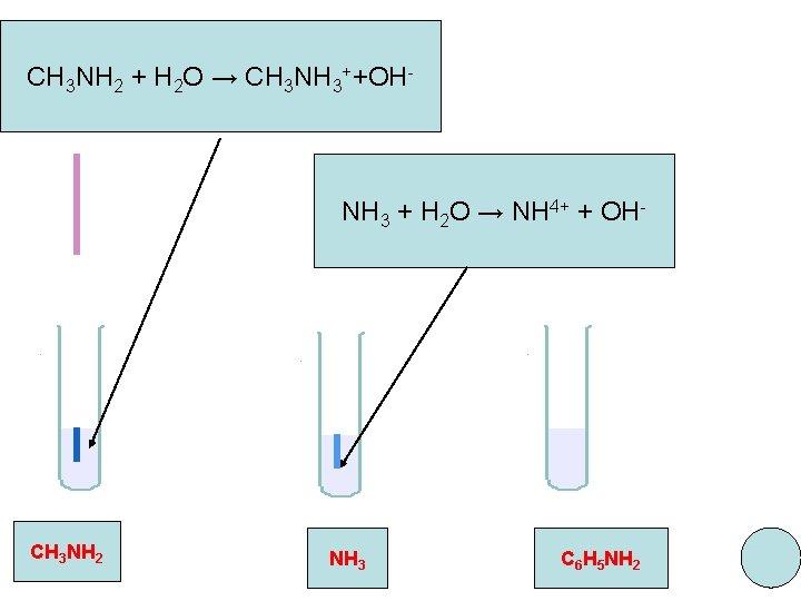 CH 3 NH 2 + H 2 O → CH 3 NH 3++OH- NH